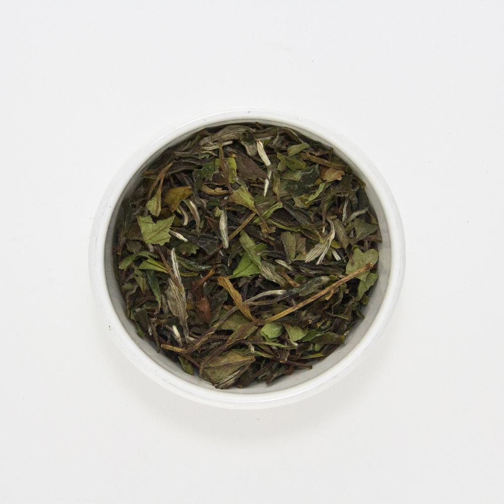 white tea bowl